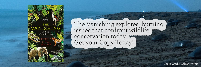 The-Vanishing-blog-creative---Footer-1.jpg